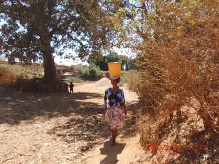 アイユーゴー事業マダガスカル 川水を運ぶ